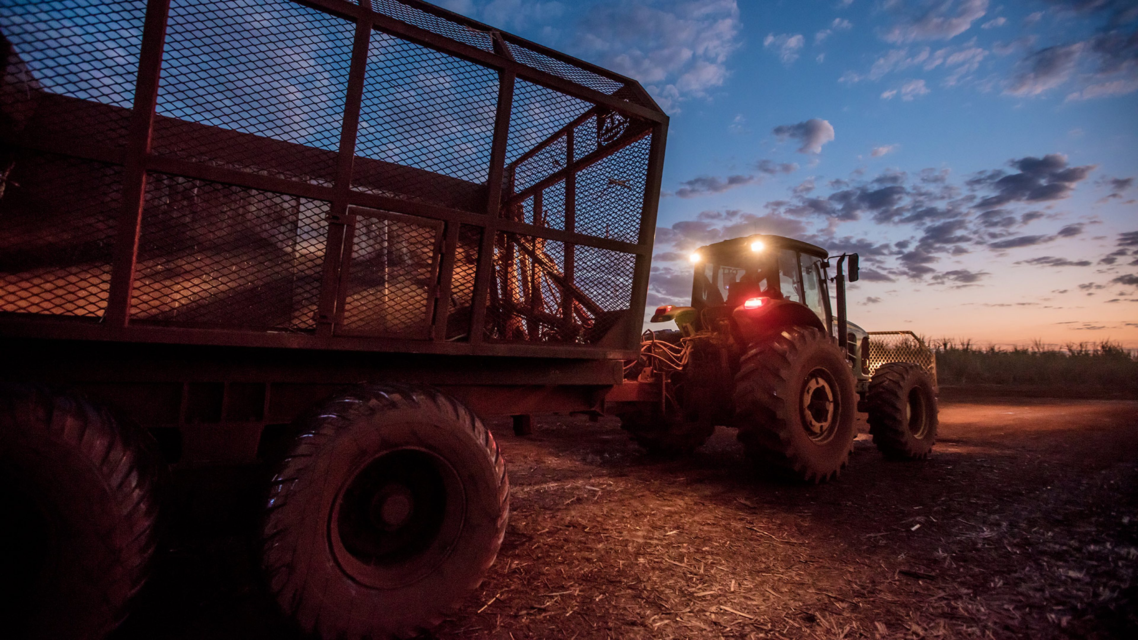 A tractor moves to another field line to start sugar cane harvesting at the BP Biofuels Tropical sugar and ethanol plant, in Brazil