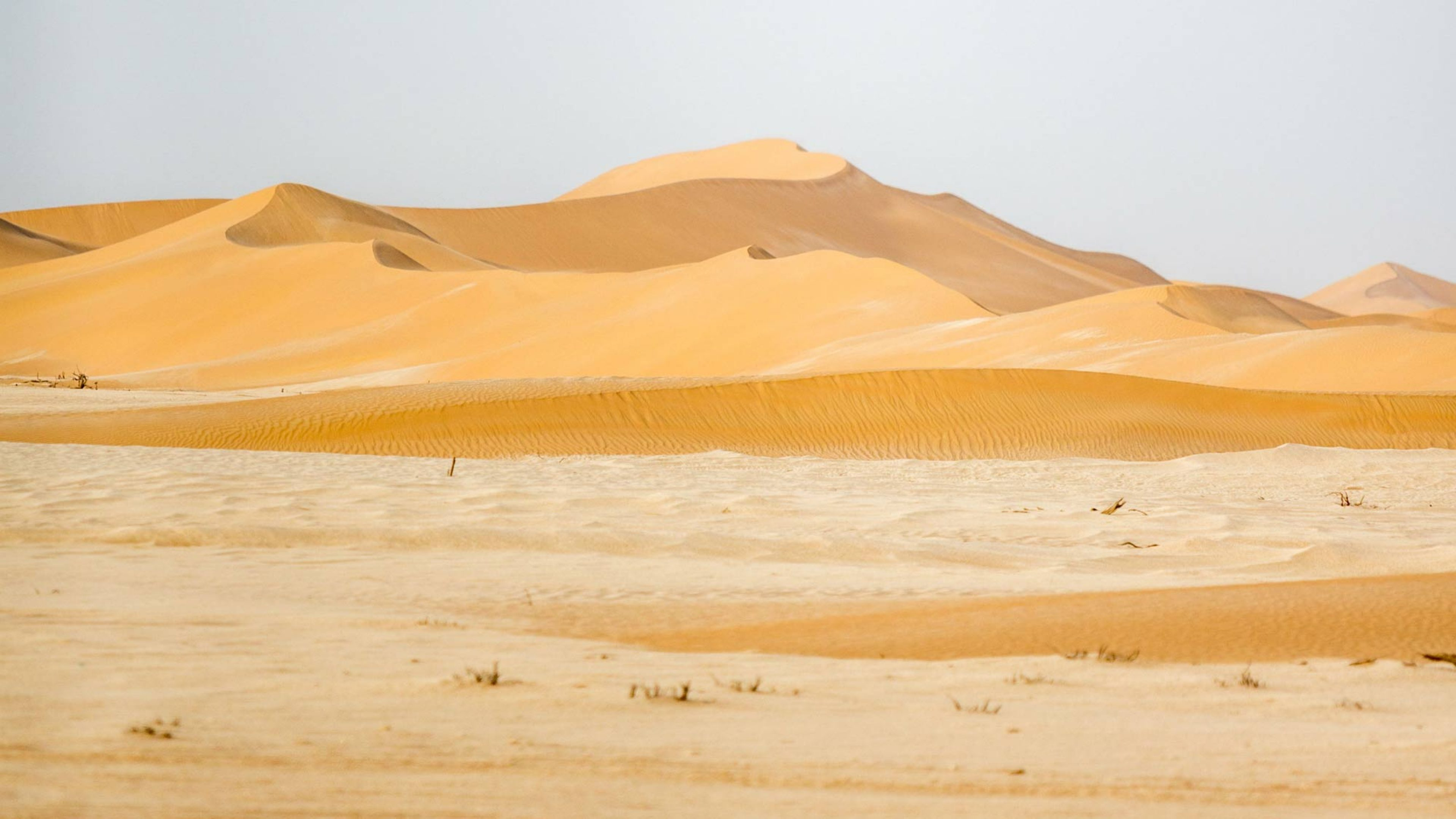 The Omani desert