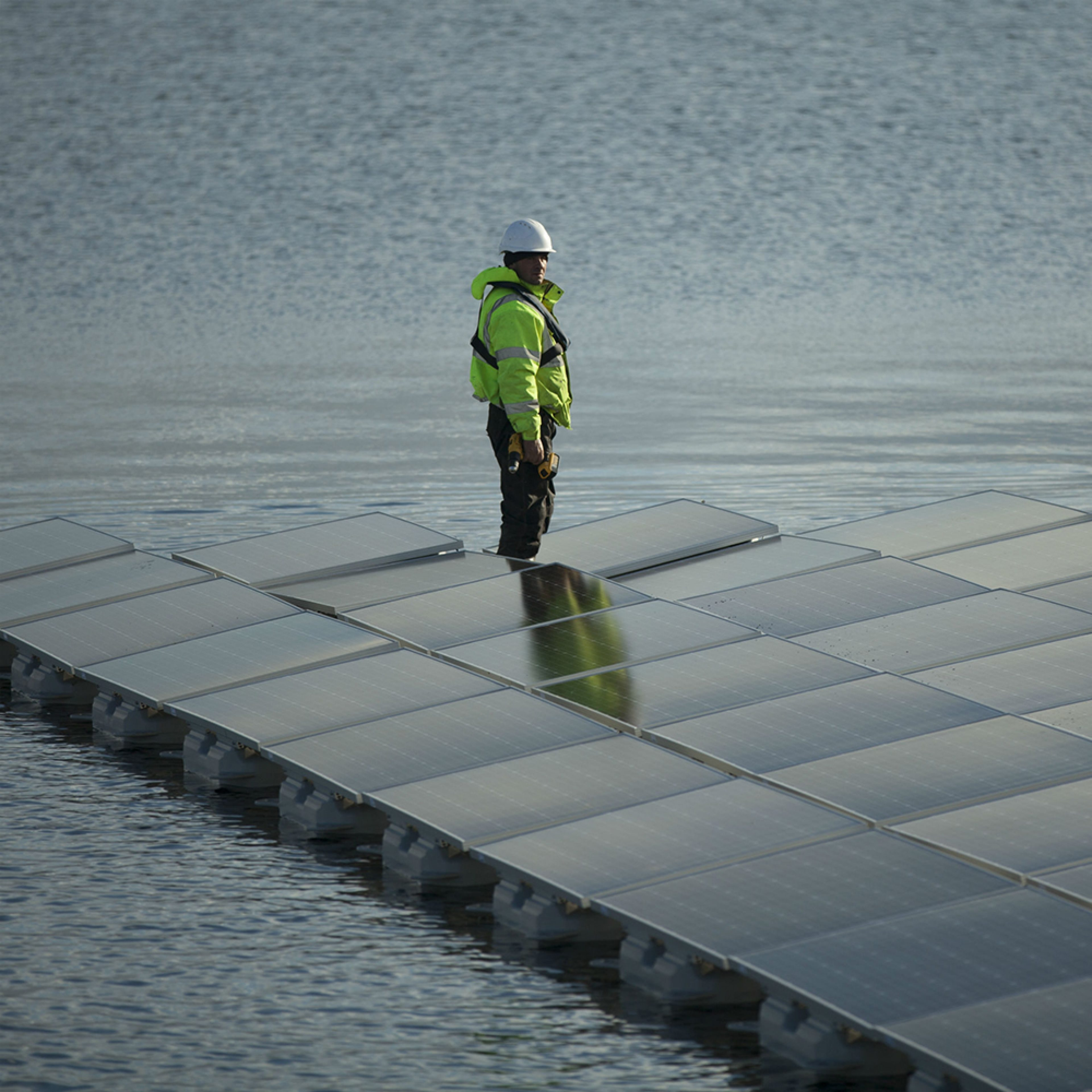 A Lightsource worker standing by solar panels