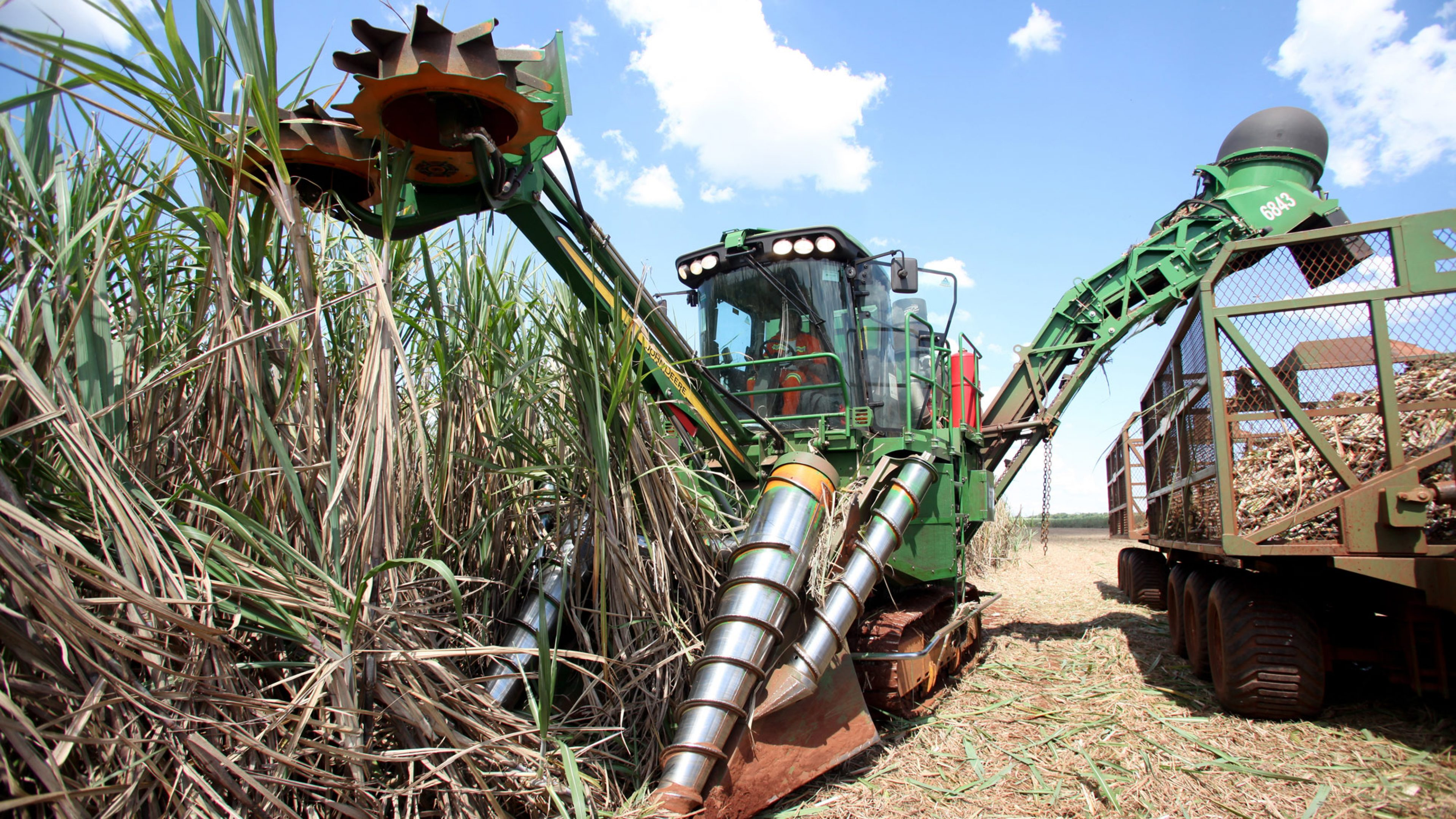 A harvester is tipping the sugar cane harvest into the back of a tractor for BP Biofuels Ituiutaba, which is located in Minas Gerais State in Brazil, ...