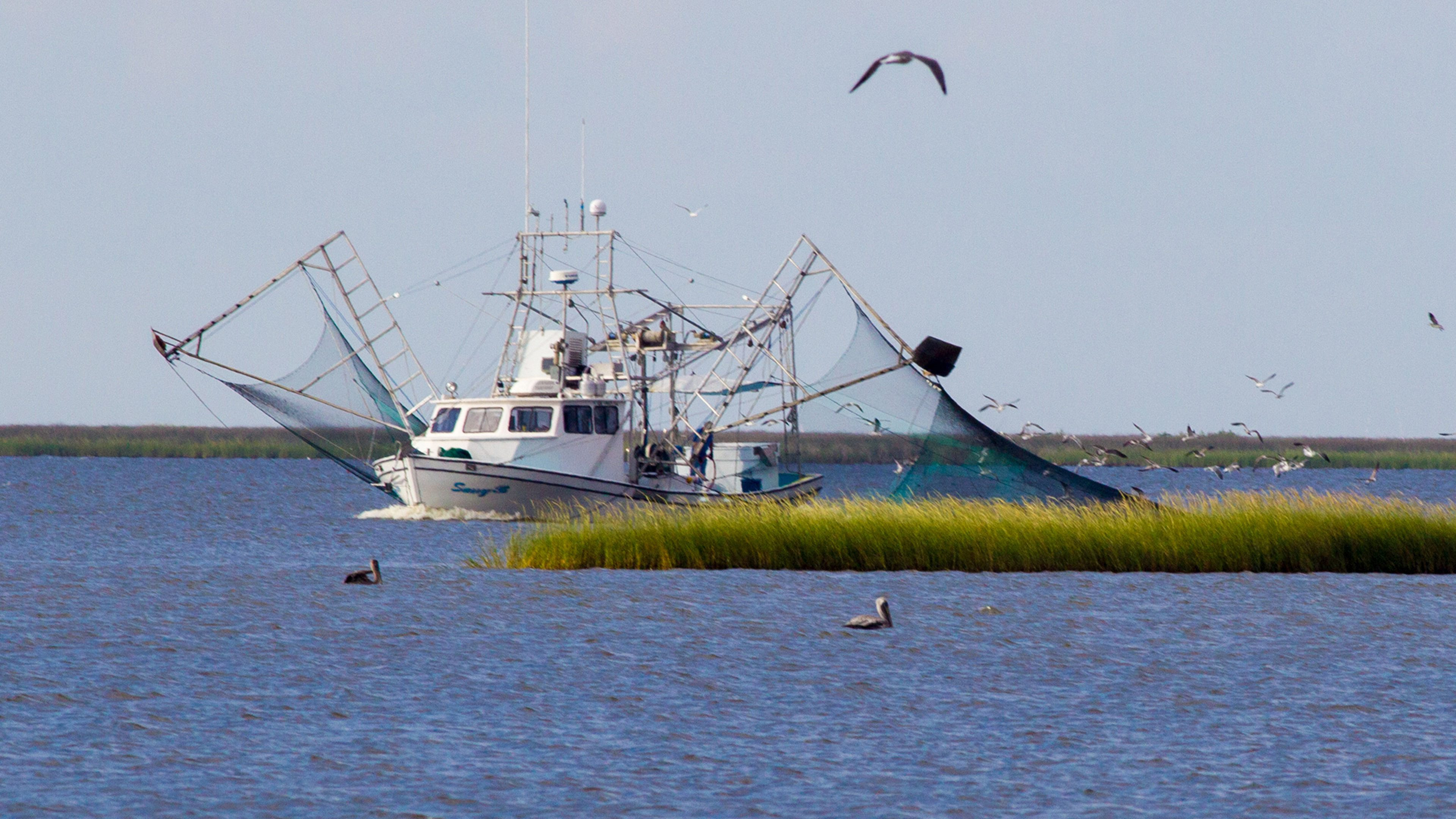Louisiana shrimper boat