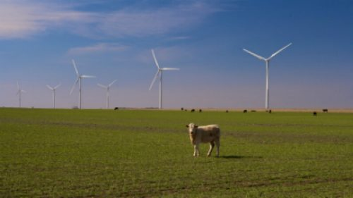 Wind Energy sites, Alternative Energy Today