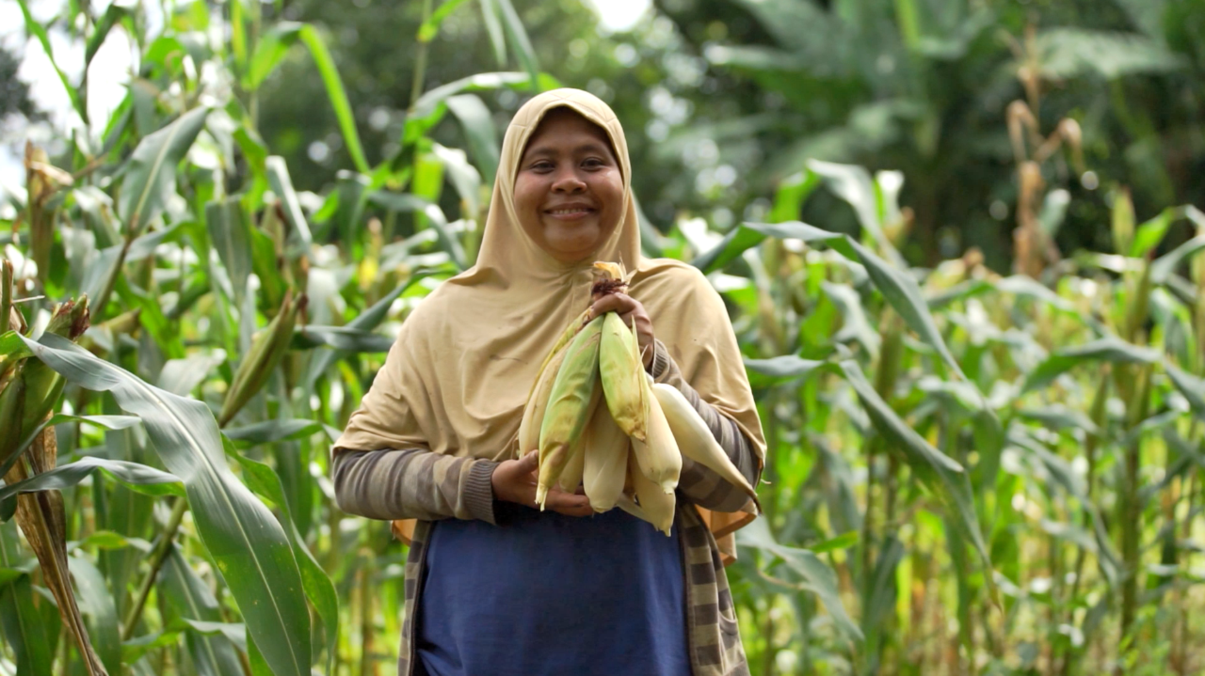 Reducing carbon, growing income – biogas, Indonesia